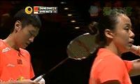 艾哈迈德/纳西尔VS张楠/赵芸蕾 2013全英公开赛 混双决赛视频