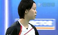 裴延姝VS李雪芮 2012韩国公开赛 女单1/4决赛视频