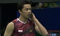 林丹VS陶菲克 2011世界羽联总决赛 男单资格赛视频