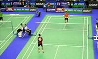 王睁茗VS陶菲克 2011法国公开赛 男单1/16决赛视频
