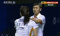 田卿/陶嘉明VS张楠/赵芸蕾 2010中国公开赛 混双决赛视频