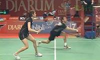 雷扎/苏珊托VS兰格瑞奇/奥利弗 2013印尼公开赛 混双1/8决赛视频