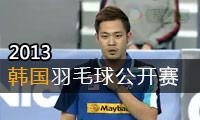 2013年韩国羽毛球公开赛