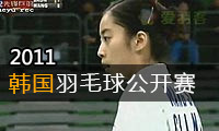 2011年韩国羽毛球公开赛