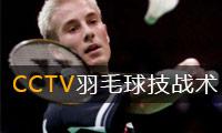 《CCTV羽毛球技战术教学》
