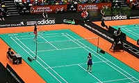 马琳VS维尼安托 2013伦敦黄金赛 女单1/8决赛明仕亚洲官网