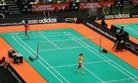 汪鑫VS瓦兰 2013伦敦黄金赛 女单1/8决赛视频