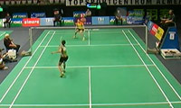 惠夕蕊VS菲比 2013荷兰公开赛 女单1/4决赛视频