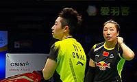 王晓理/于洋VS当甲农/库查拉 2013世界羽联总决赛 女双资格赛视频