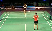 李雪芮VS三谷美菜津 2013世界羽联总决赛 女单资格赛视频