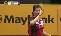 裴延姝VS辛德胡 2014马来公开赛 女单1/8决赛视频