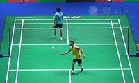 李宗伟VS坦农萨克 2014全英公开赛 男单1/16决赛视频