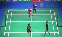 张艺娜/金昭映VS赫特里克/尼尔特 2014全英公开赛 女双1/16决赛视频