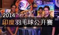 2014年印度羽毛球公开赛