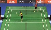 戴资颖VS叶姵延 2014新加坡公开赛 女单1/16决赛视频