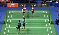 高成炫/金荷娜VS柳延星/张艺娜 2014新加坡公开赛 混双1/4决赛视频