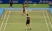 维汀哈斯VS阮天明 2014日本公开赛 男单1/8决赛视频