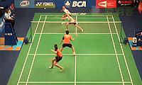 尼尔森/佩蒂森VS尼迪蓬/普缇塔 2014印尼公开赛 混双1/16决赛视频