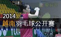2014年越南羽毛球公开赛