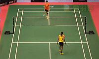 辛德胡VS韩利 2014澳门公开赛 女单1/4决赛视频
