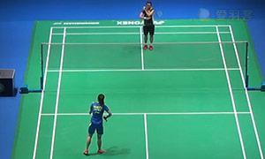 戴资颖VS王适娴 2015全英公开赛 女单1/4决赛视频