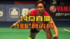 """印尼赛:""""二王""""无缘决赛 中国锁定混双冠亚军"""