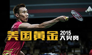 2015年美国羽毛球公开赛