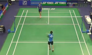 戴资颖VS李雪芮 2015法国公开赛 女单1/4决赛视频