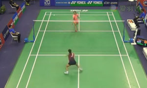 王适娴VS奥原希望 2015法国公开赛 女单1/4决赛视频