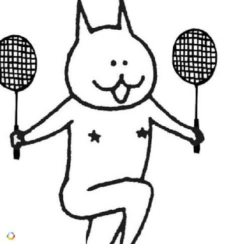 爱羽客羽毛球网