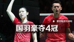 中国大师赛丨国羽豪夺4冠,林丹称王
