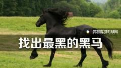 里约奥运,谁才是羽球最大黑马?
