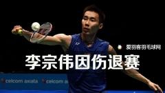 法国赛:李宗伟因伤退赛,薛松不敌乔纳坦