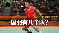 中国羽毛球国家队,到底有几个队?