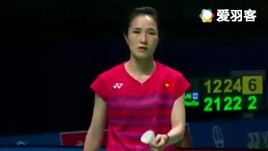 武氏庄VS萨福 2017苏迪曼杯 混合团体小组赛视频