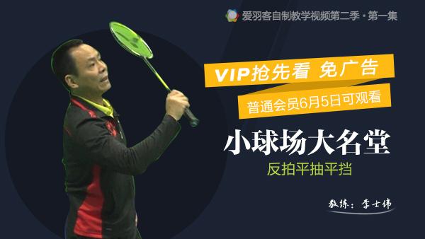 VIP抢先看:业余进阶,李老教你反拍平抽挡!
