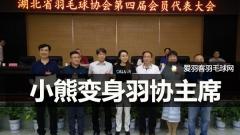 给力!赵芸蕾当选湖北省羽协主席