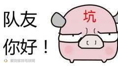 什么才叫猪一样的双打队友?看完这个你就明白了