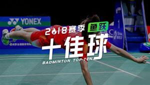 2018赛季鱼跃十佳球丨最低难度系数101A请给分!
