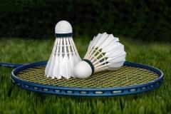 羽毛球为我们的生活带来了什么?
