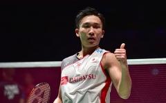 新加坡1/8决赛对阵出炉,陈晓欣挑战小戴