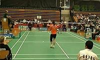 王琳VS菲尔达萨里 第二局 2011澳洲公开赛 女单1/4决赛视频