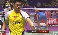 朴成焕VS林丹 2010世锦赛 男单1/4决赛视频