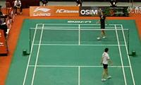 王适娴VS申克 2011新加坡公开赛 女单1/4决赛视频