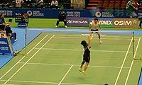 戴资颖VS韩利 2013日本公开赛 女单1/8决赛明仕亚洲官网