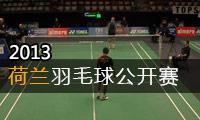 2013年荷兰羽毛球公开赛