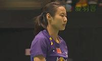 王仪涵VS王适娴 2013香港公开赛 女单决赛视频