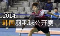 2014年韩国羽毛球公开赛
