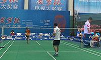 杨帆(四川)VS汪海(湖南) 2014贺岁杯对抗赛 男单三四名决赛视频