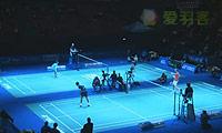 辛德胡VS王适娴 2014瑞士公开赛 女单1/4决赛视频